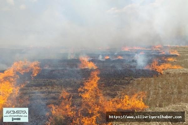 Silivri'de Buğday Tarlası Alevlere Teslim Oldu