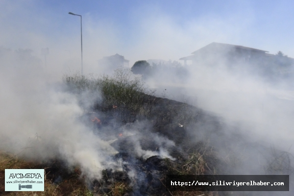 Silivri'de Otluk Alanda Çıkan Yangın Evlere Sıçramadan Söndürüldü