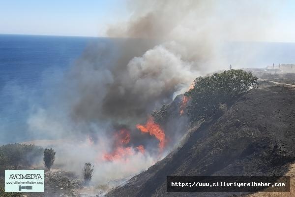 Silivri Parkköy'de  Mangal Yakan Tatilci Yangın Çıkardı