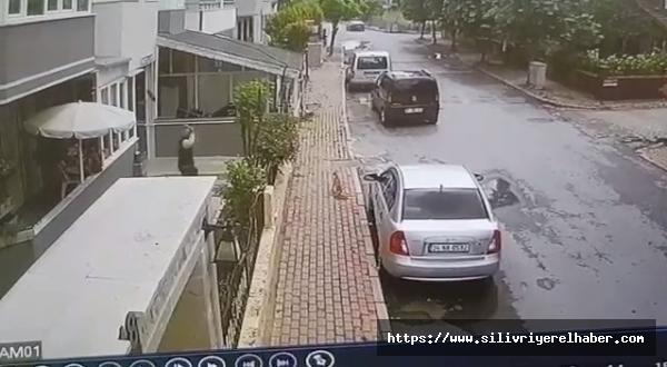 Bahçeye Giren Kediye Tekmeli Saldırı Güvenlik Kamerasına Yansıdı