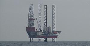 Dev petrol arama platformu...