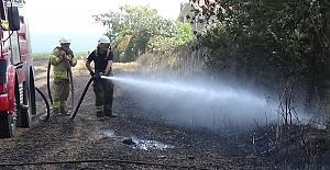 Silivri'de tarla yangını