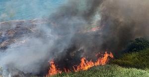 Yakılan mangal otluk alanı tutuşturdu: 1 Gözaltı
