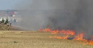 Alipaşa Mahallesinde Çıkan Anız Yangını Sürücülere Zor Anlar Yaşattı