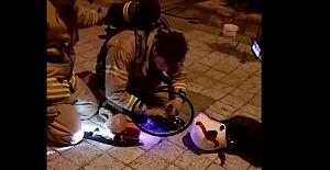 Çıkan Yangında İtfaiye eri iki yavru kediyi yanmaktan son anda kurtardı