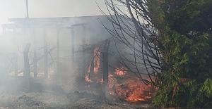 Silivri'de buğday tarlası yangını! Çok sayıda İtfaiye ekipleri sevk edildi