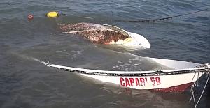 Şiddetli rüzgar bazı balıkçı teknelerini batırdı