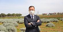 Silivri Belediyesi 50 bin Sebze Meyve Ekimi Yaptı